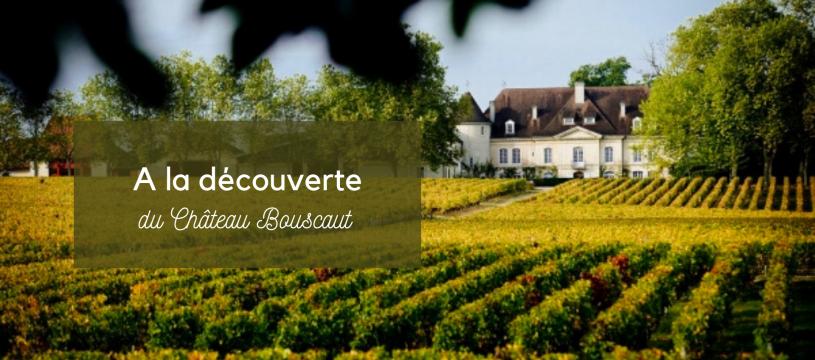 A la découverte du Château Bouscaut
