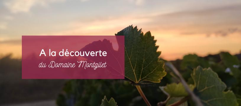 A la découverte du Domaine Montgilet
